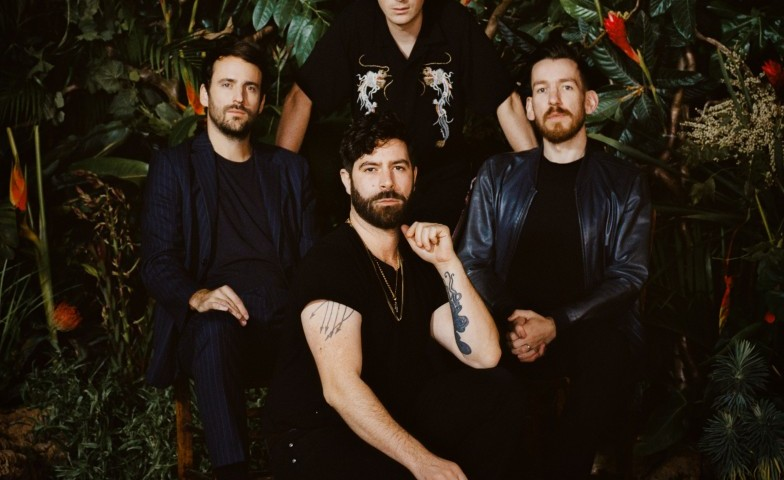 Main_Photo_-_Foals.jpg
